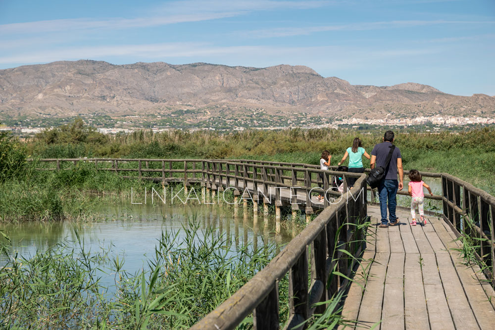 El Parque Natural de El Hondo